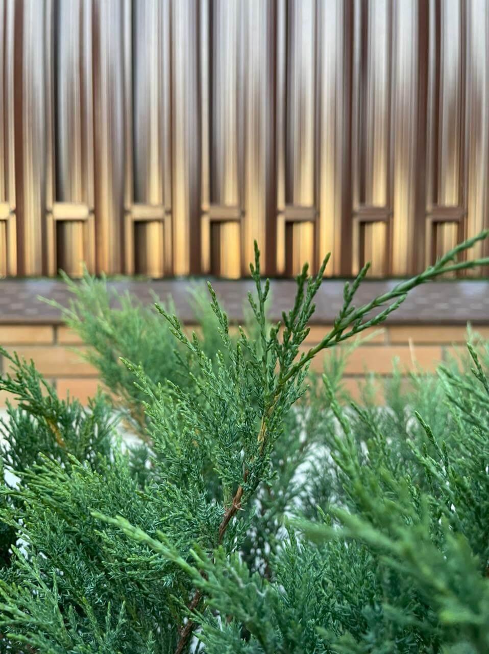 забор из штакетника шоколад двухсторонний фото5