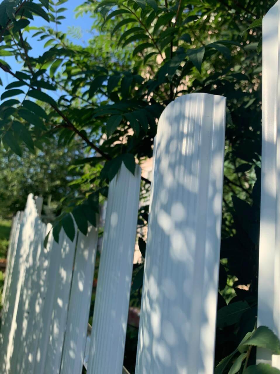 забор из штакетника белый фото5
